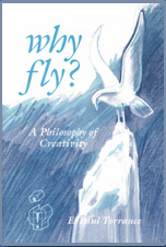 Why Fly? - Product Image